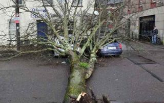 Storm insurance claims Ireland
