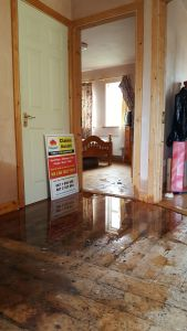 Water Damage loss assessors